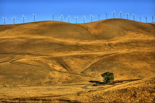 Wind_mills