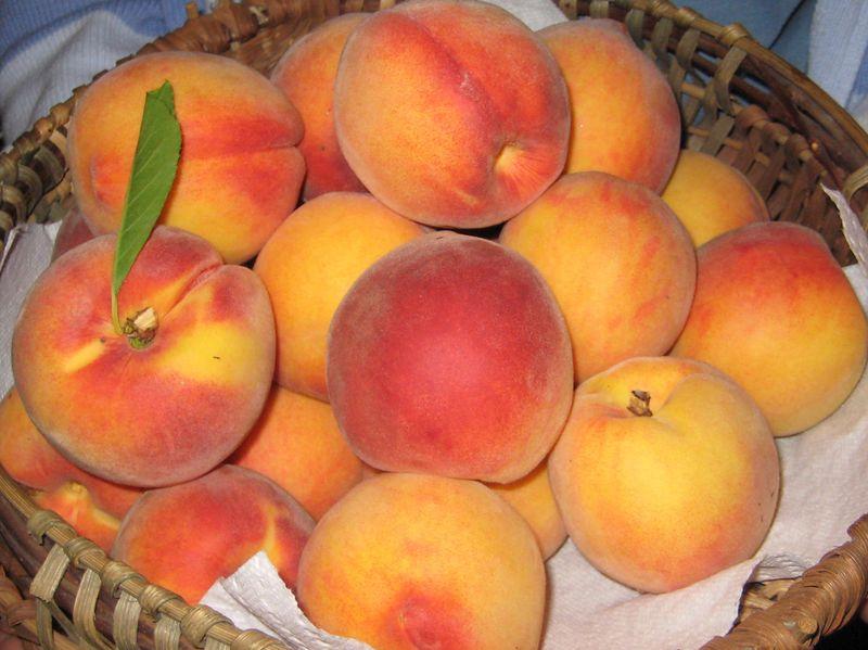 2011-August-peaches