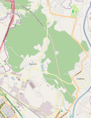 Map of Khimki Forest, including planned highway