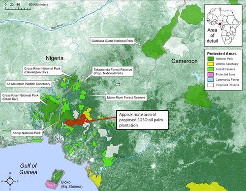 Deforestation_kamerun_map_full