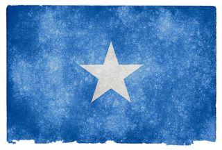 Somaliflag_somerights