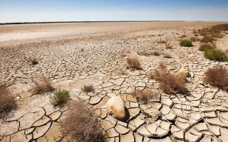 Desertification Photo