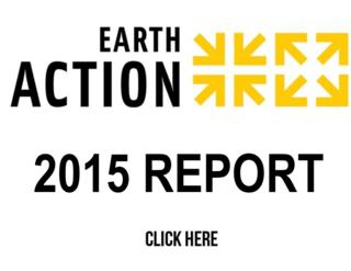 2015 Campaign Report