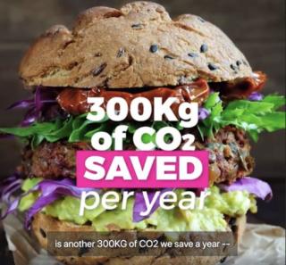 Avaaz 10